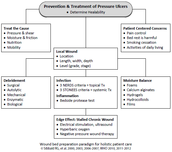 Prevention and Treatment of Pressure Ulcers - image