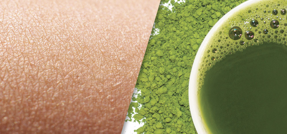collage picture of green tea extract and human skin