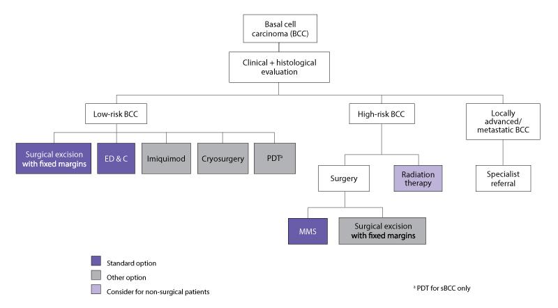 diagram algorithm for treatment of BCCs