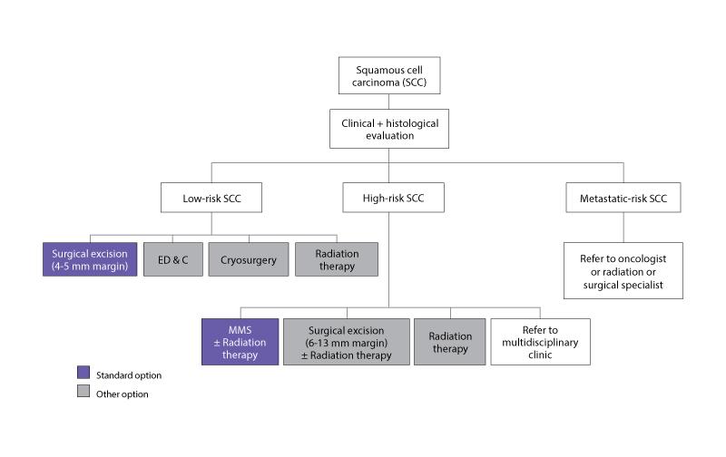 Diagram algorithm for management of SCCs.