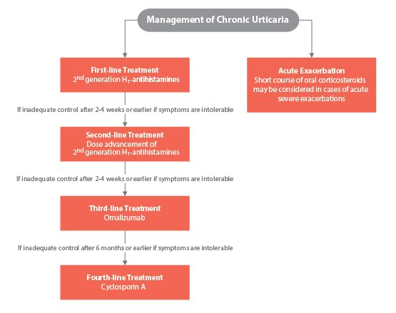 Chronic Urticaria: Following Practice Guidelines - image