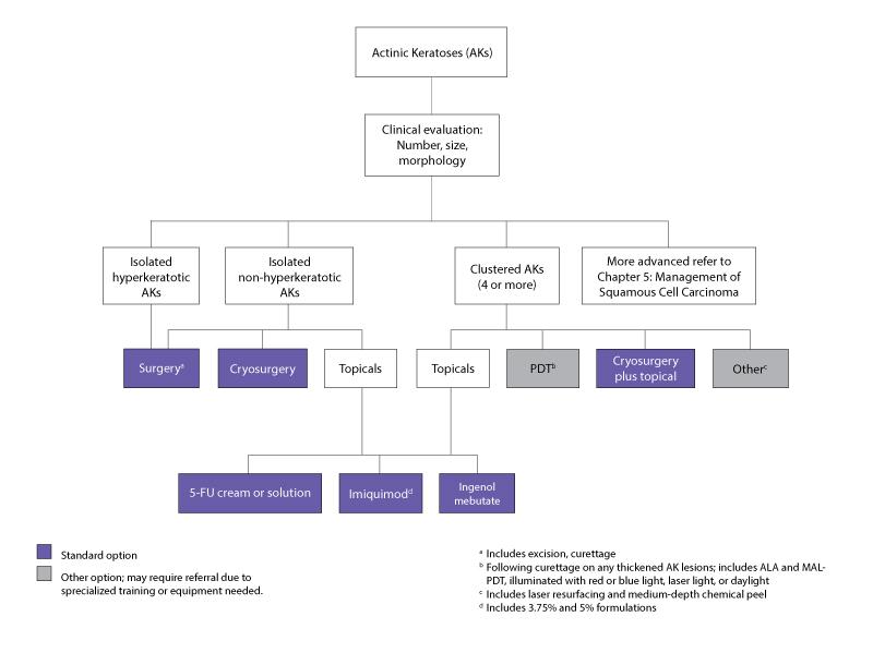 diagram algorithm for management of actinic keratoses.