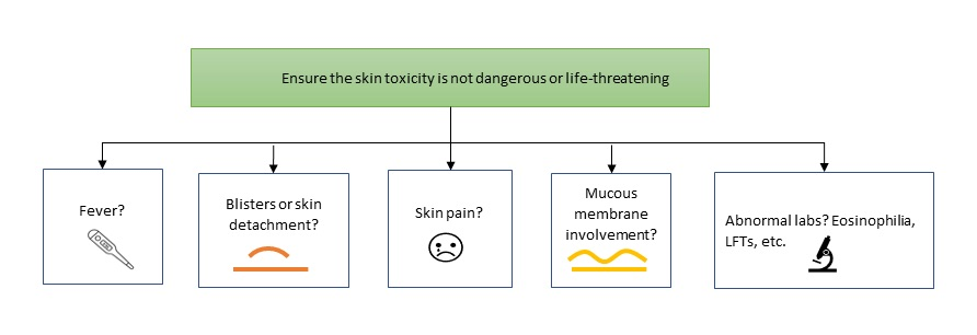 Canadian Skin Management in Oncology (CaSMO) Algorithm for Patients With Oncology Treatment-Related Skin Toxicities - image